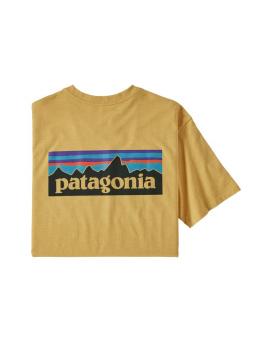 Patagonia Responsibili Tee